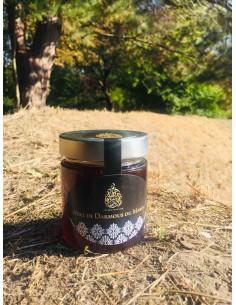 Miel de Darmous (Euphorbe) du Maroc